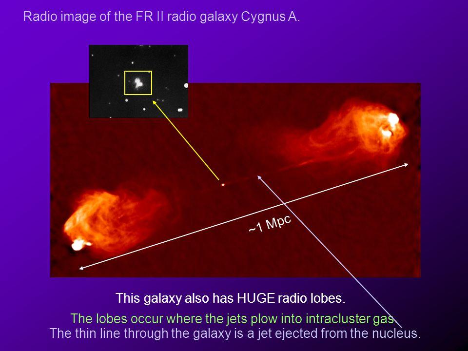 Radio image of the FR II radio galaxy Cygnus A.