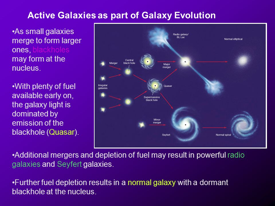 Active Galaxies as part of Galaxy Evolution