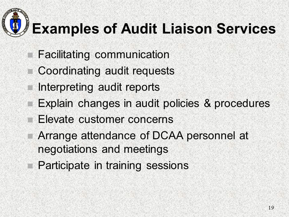 Examples of Audit Liaison Services