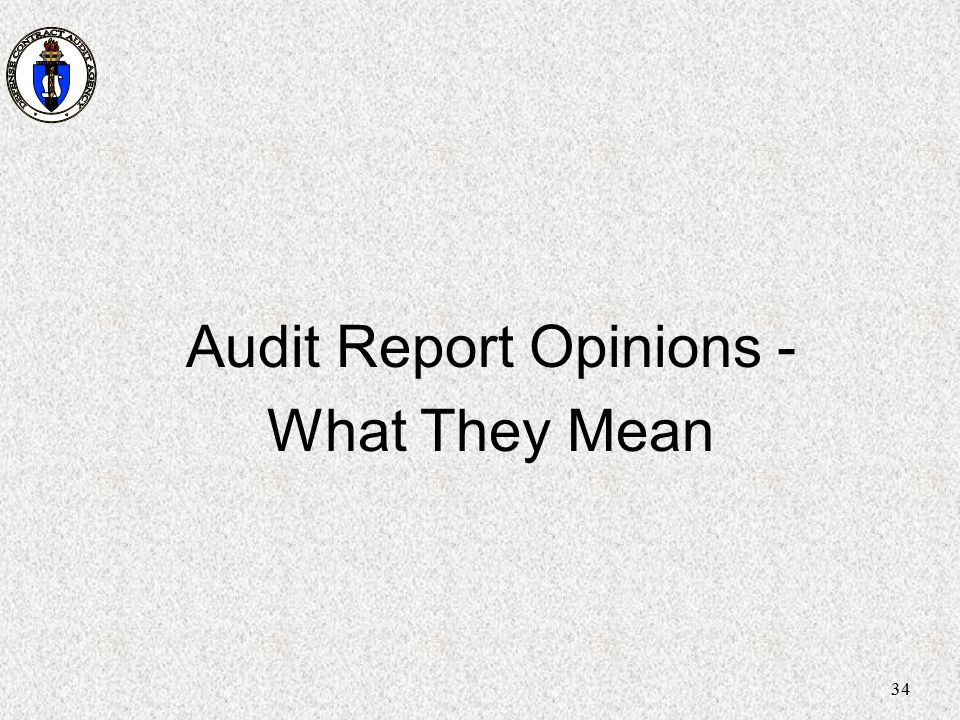 Audit Report Opinions -