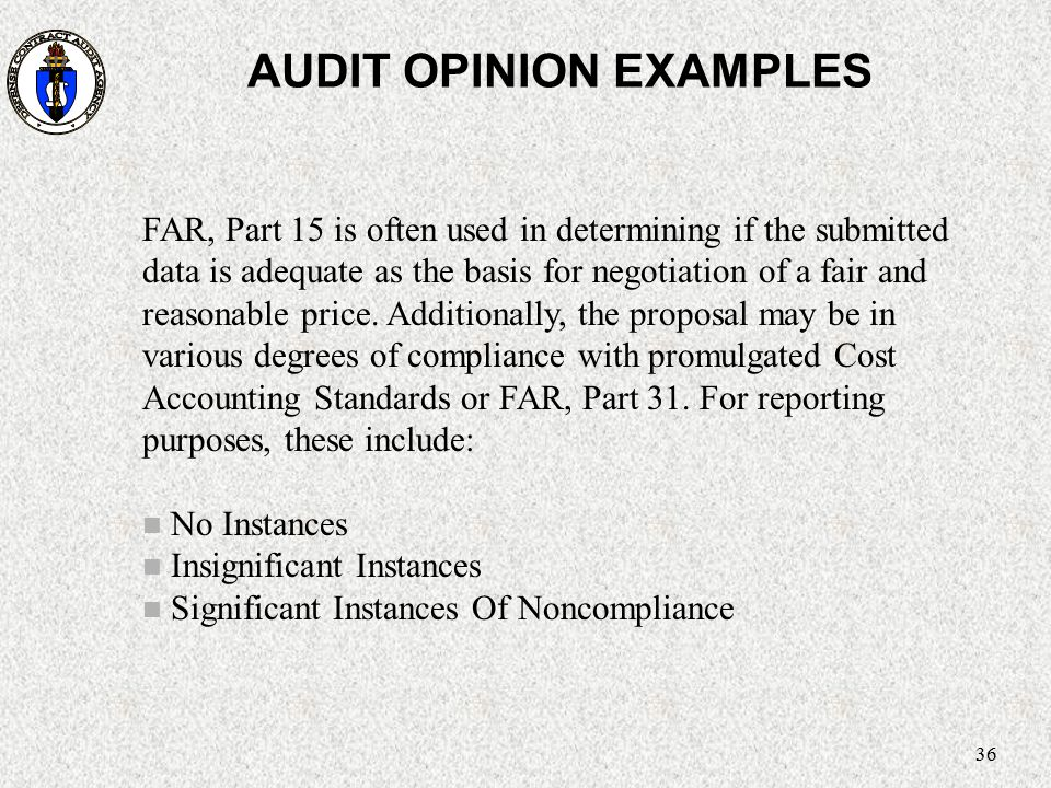 AUDIT OPINION EXAMPLES