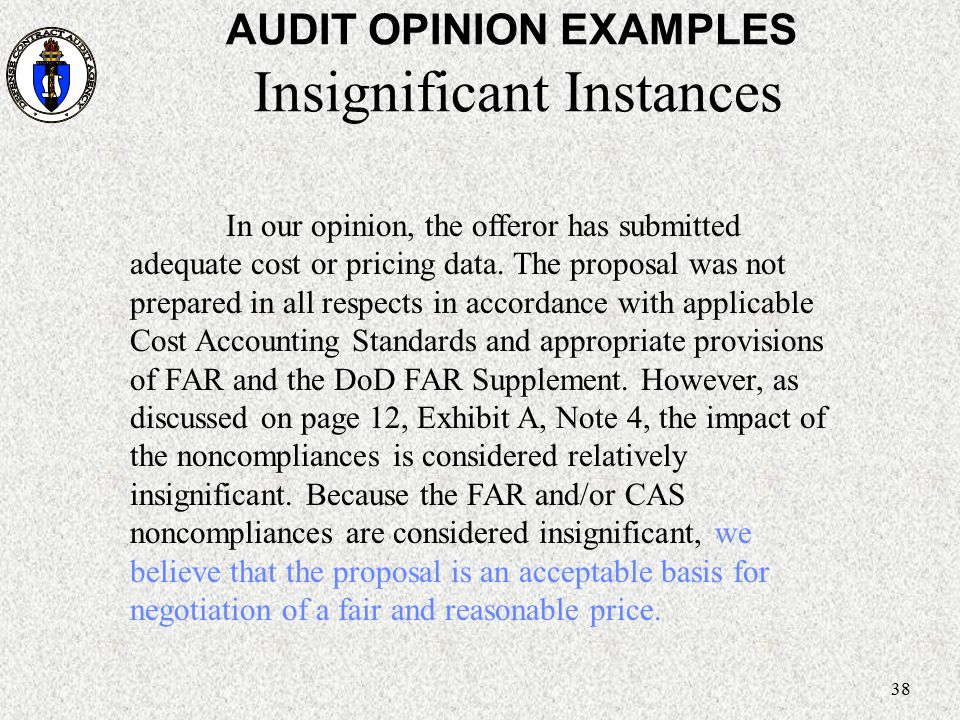 AUDIT OPINION EXAMPLES Insignificant Instances