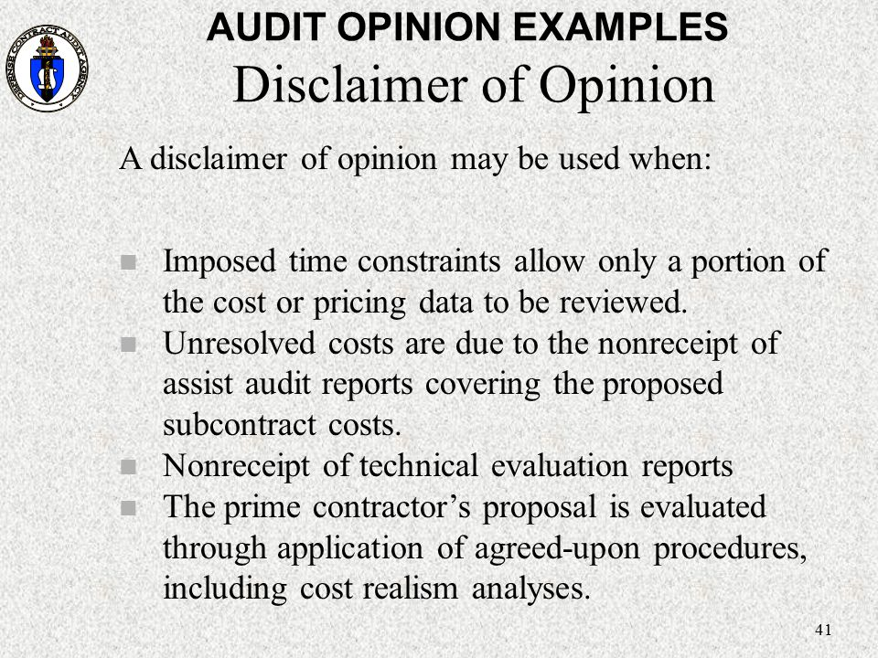AUDIT OPINION EXAMPLES Disclaimer of Opinion