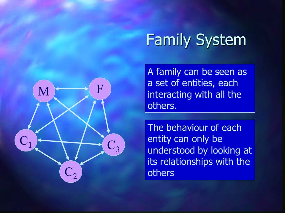 Family System A family can be seen as a set of entities, each interacting with all the others. M. F.