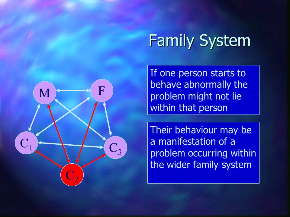 Family System If one person starts to behave abnormally the problem might not lie within that person.