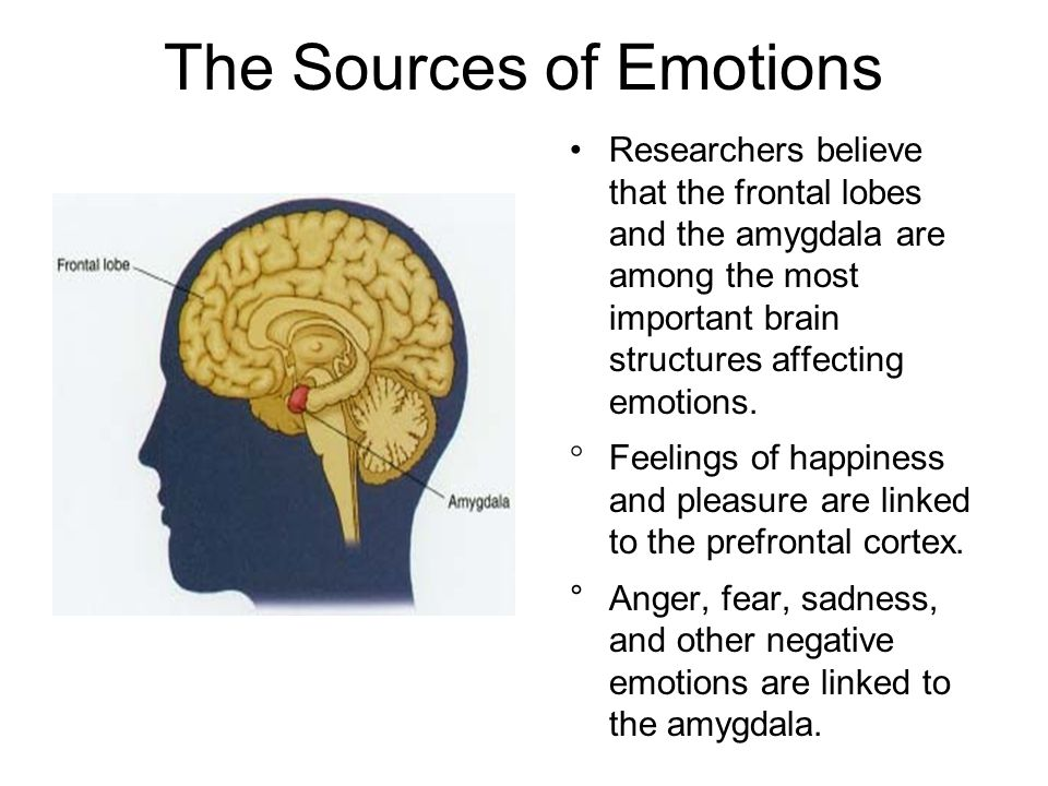 The Sources of Emotions