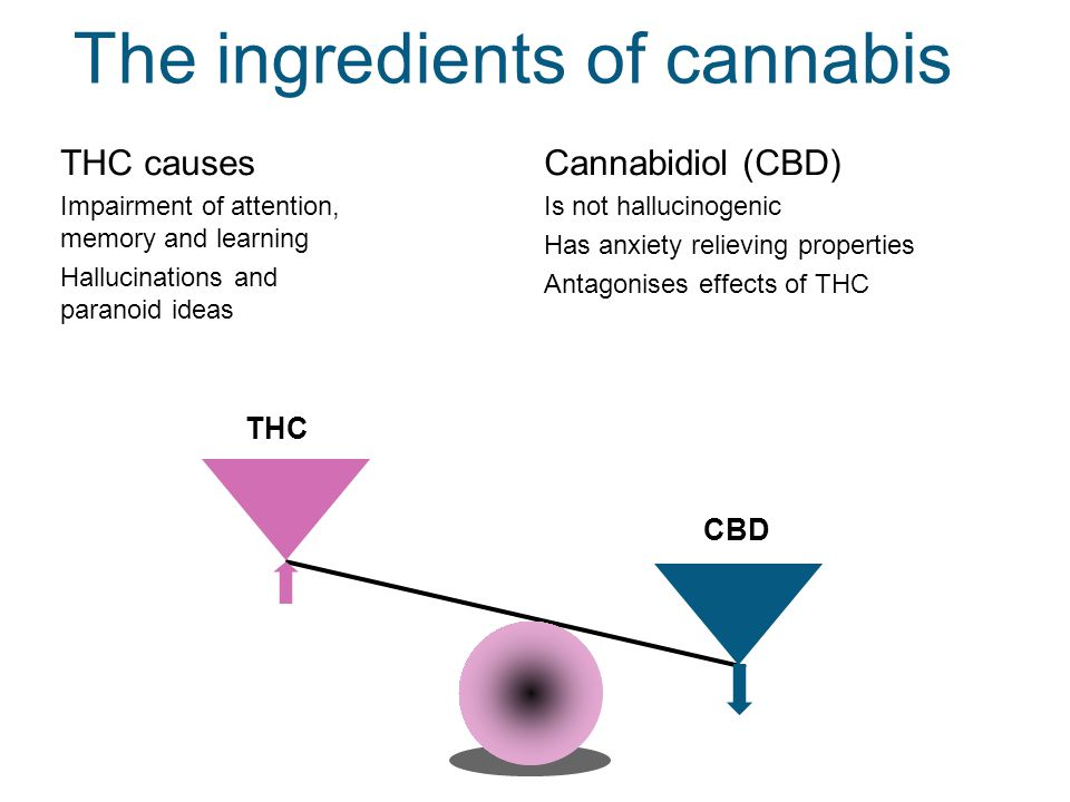 The ingredients of cannabis