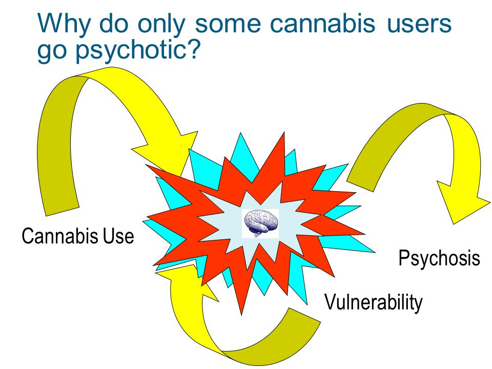 Why do only some cannabis users go psychotic