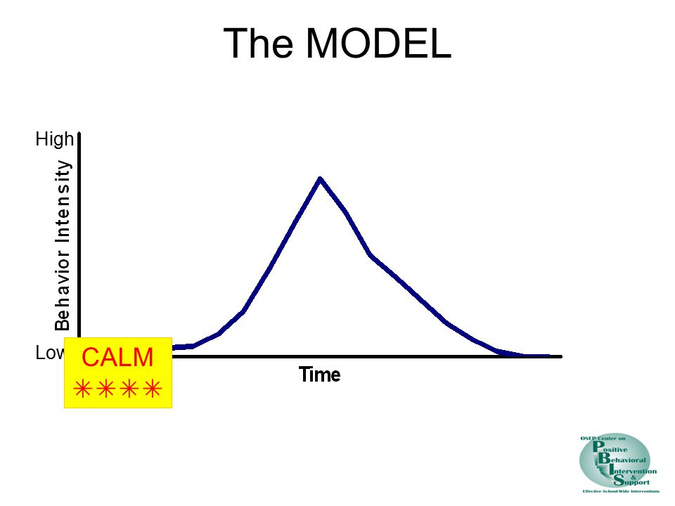The MODEL High Low CALM 