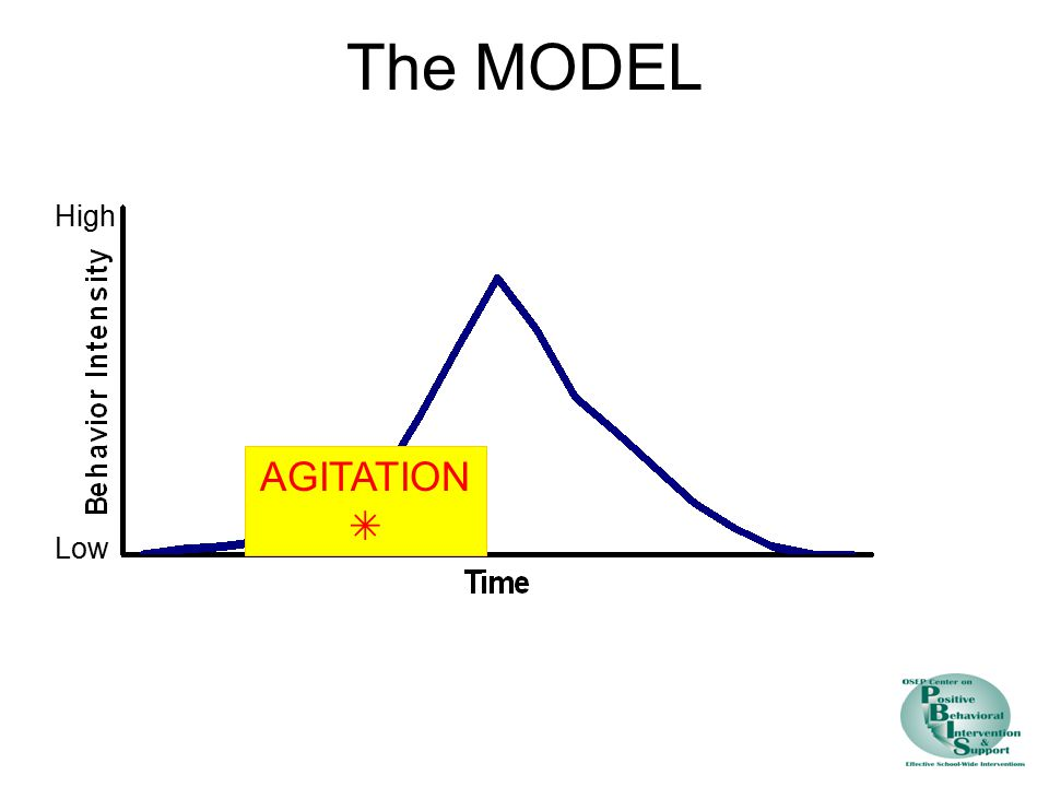 The MODEL High AGITATION  Low