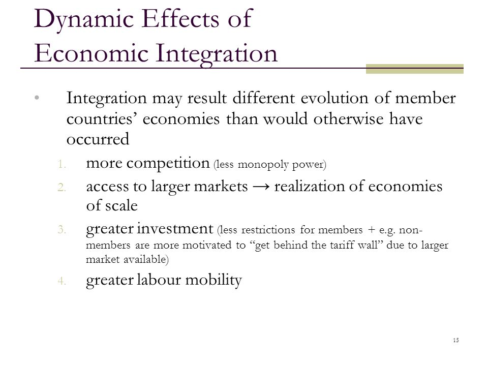 Dynamic Effects of Economic Integration