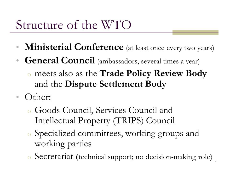 Structure of the WTO Ministerial Conference (at least once every two years) General Council (ambassadors, several times a year)