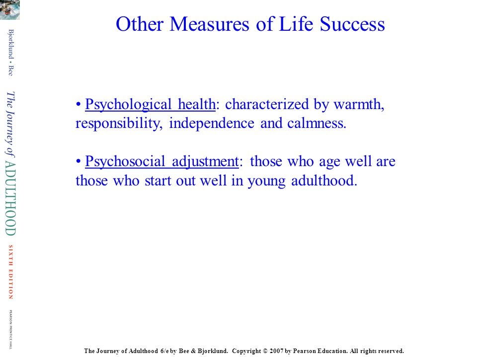 Other Measures of Life Success