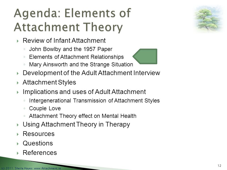 Agenda: Elements of Attachment Theory