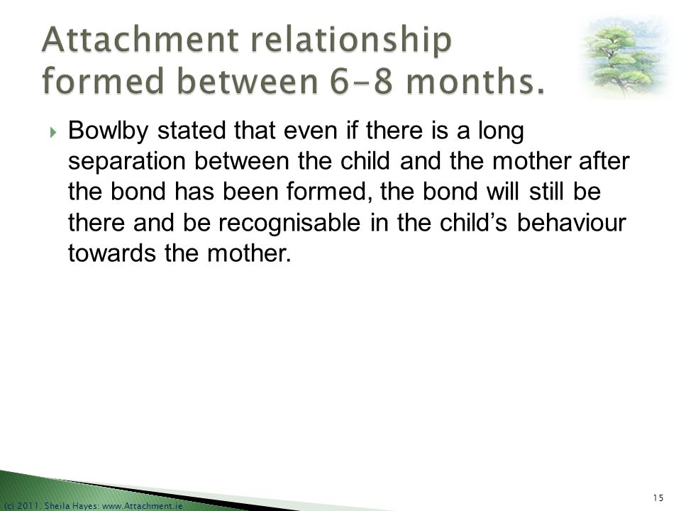 Attachment relationship formed between 6-8 months.