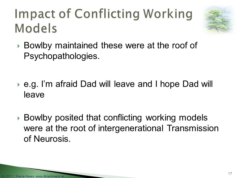 Impact of Conflicting Working Models