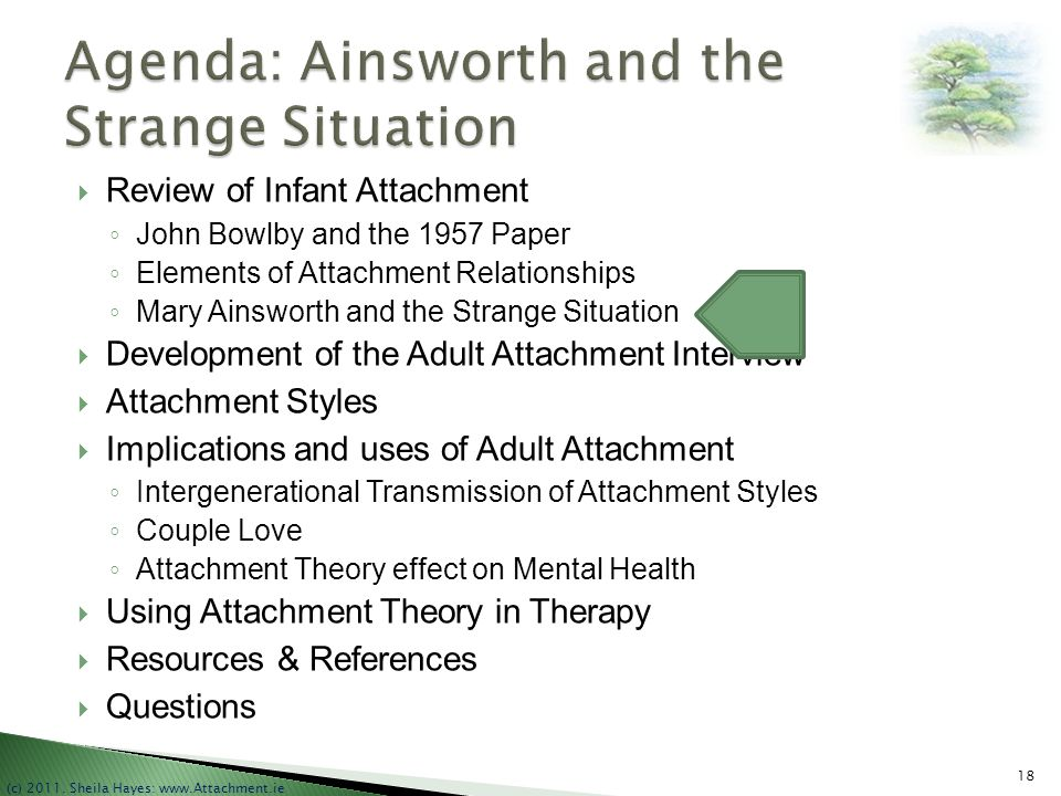 Agenda: Ainsworth and the Strange Situation