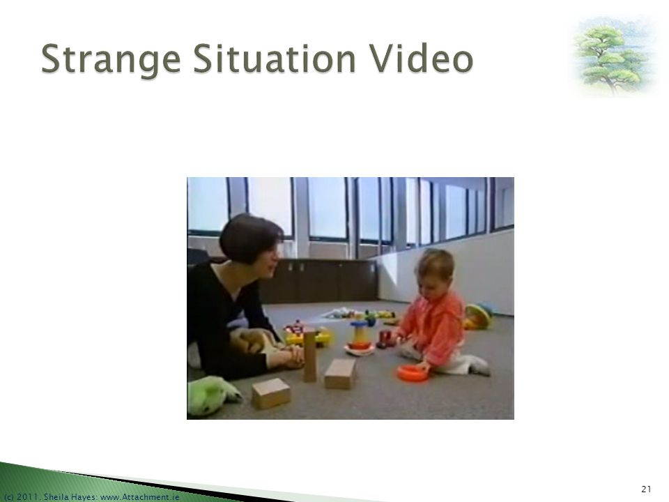 Strange Situation Video