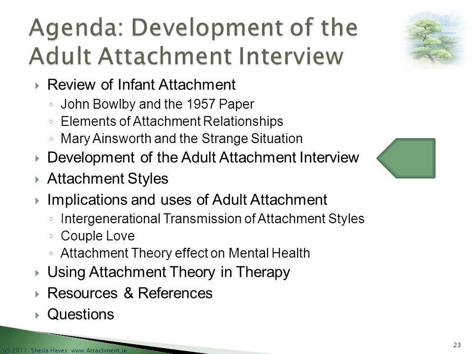 Agenda: Development of the Adult Attachment Interview