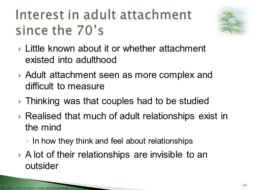 Interest in adult attachment since the 70's