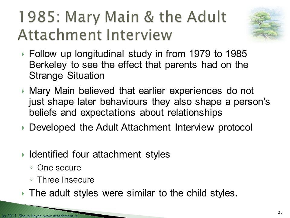 1985: Mary Main & the Adult Attachment Interview