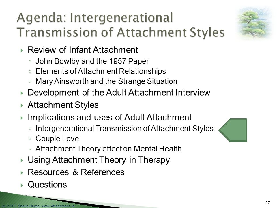 Agenda: Intergenerational Transmission of Attachment Styles