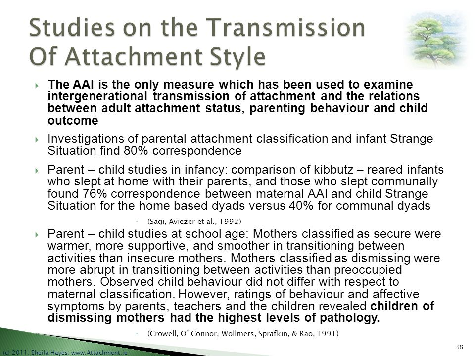 Studies on the Transmission Of Attachment Style