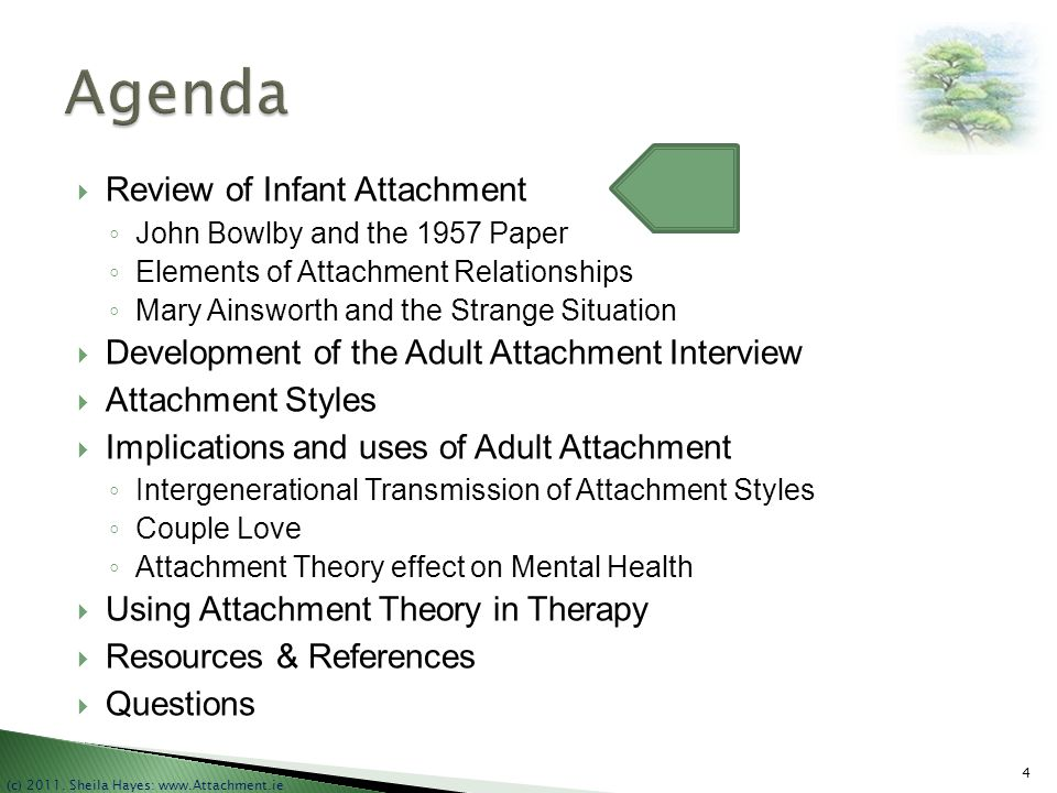 Agenda Review of Infant Attachment