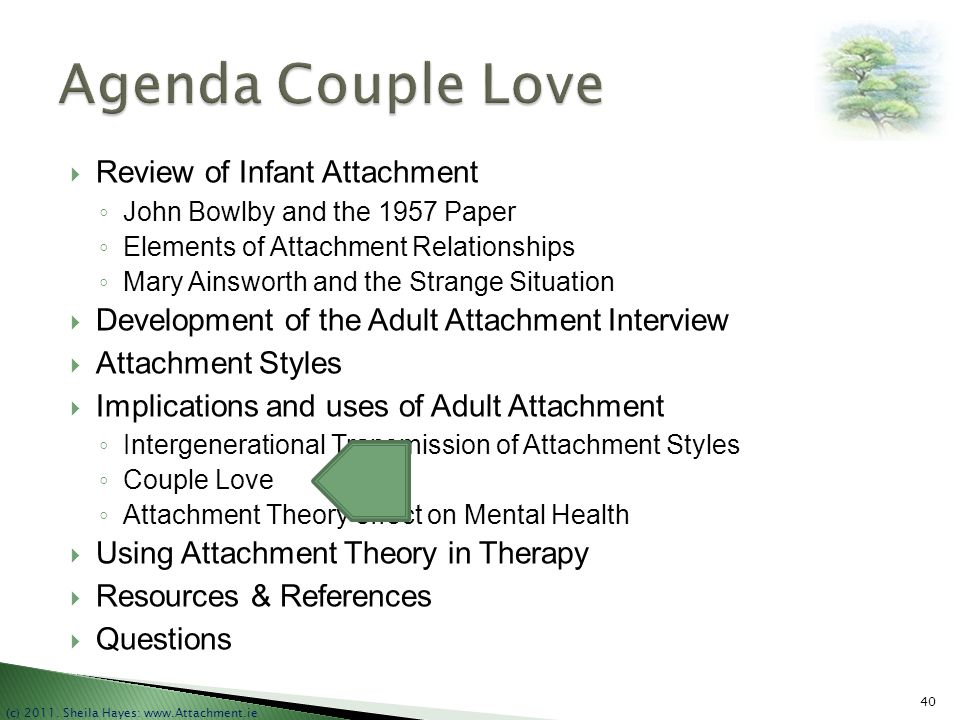 Agenda Couple Love Review of Infant Attachment