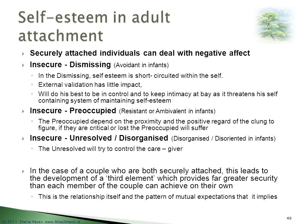 Self-esteem in adult attachment