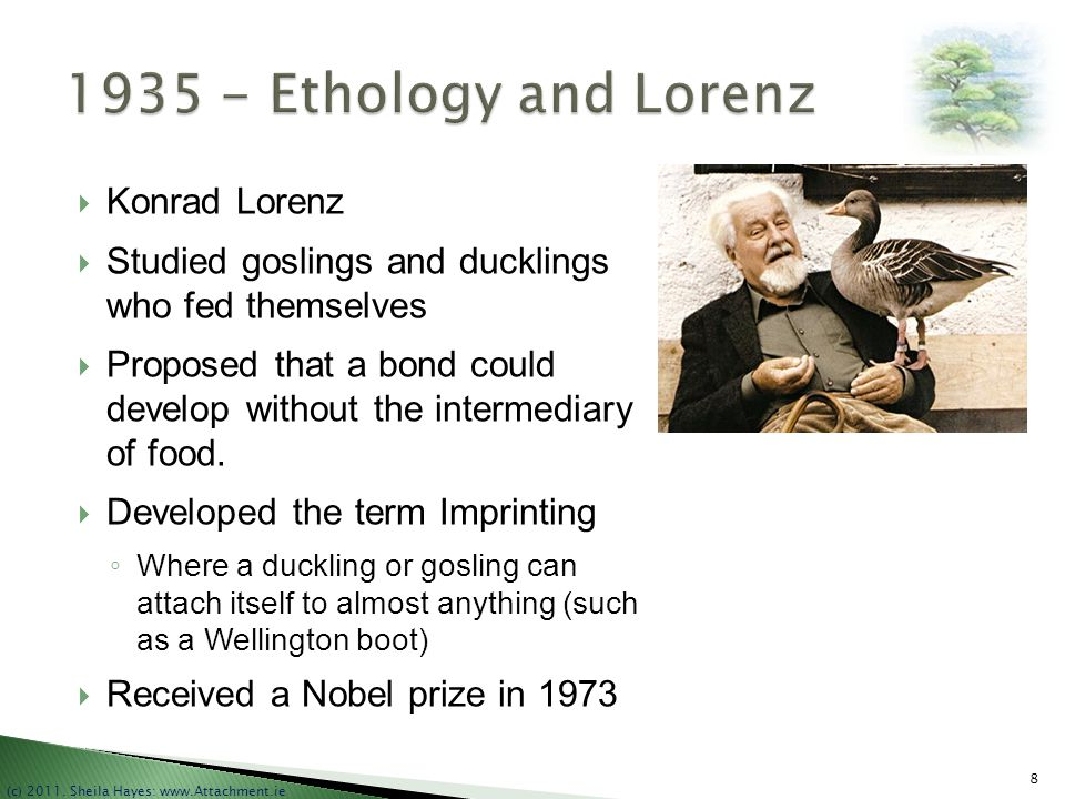 1935 - Ethology and Lorenz Konrad Lorenz