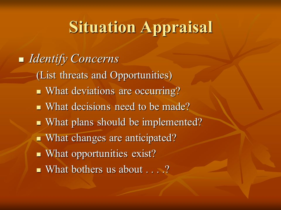 Situation Appraisal Identify Concerns (List threats and Opportunities)