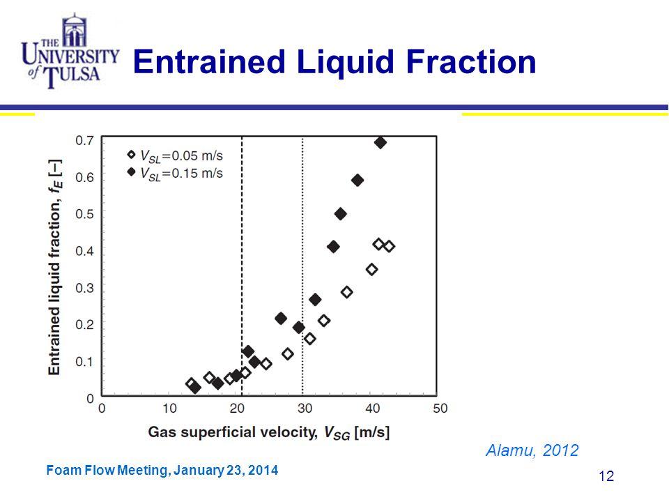 Entrained Liquid Fraction