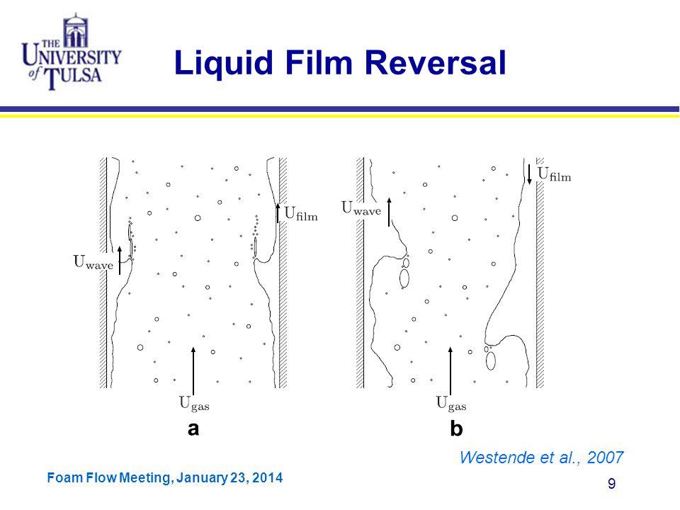 Liquid Film Reversal Westende et al., 2007