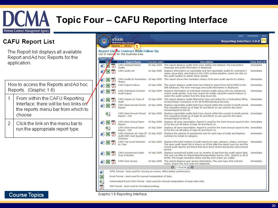 Topic Four – CAFU Reporting Interface