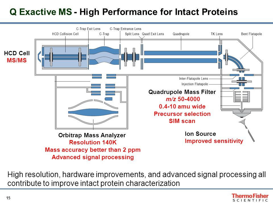 Q Exactive MS - High Performance for Intact Proteins