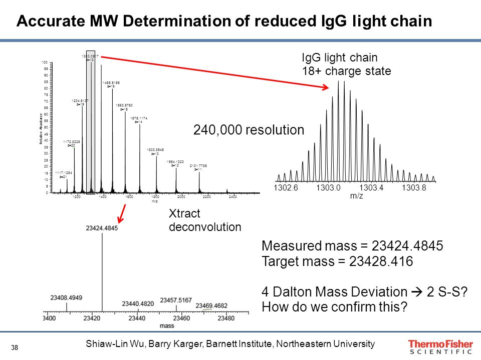 Accurate MW Determination of reduced IgG light chain