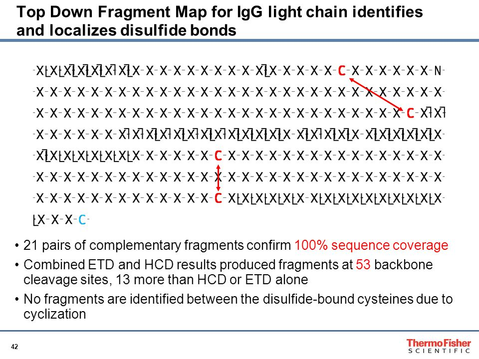 Top Down Fragment Map for IgG light chain identifies and localizes disulfide bonds