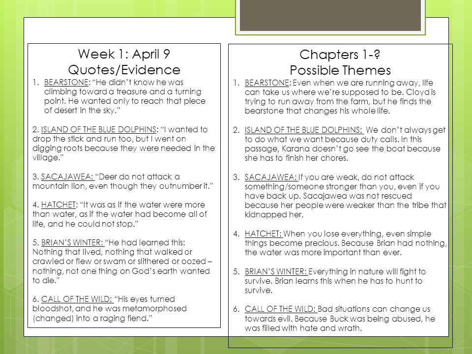 Week 1: April 9 Chapters 1- Quotes/Evidence Possible Themes