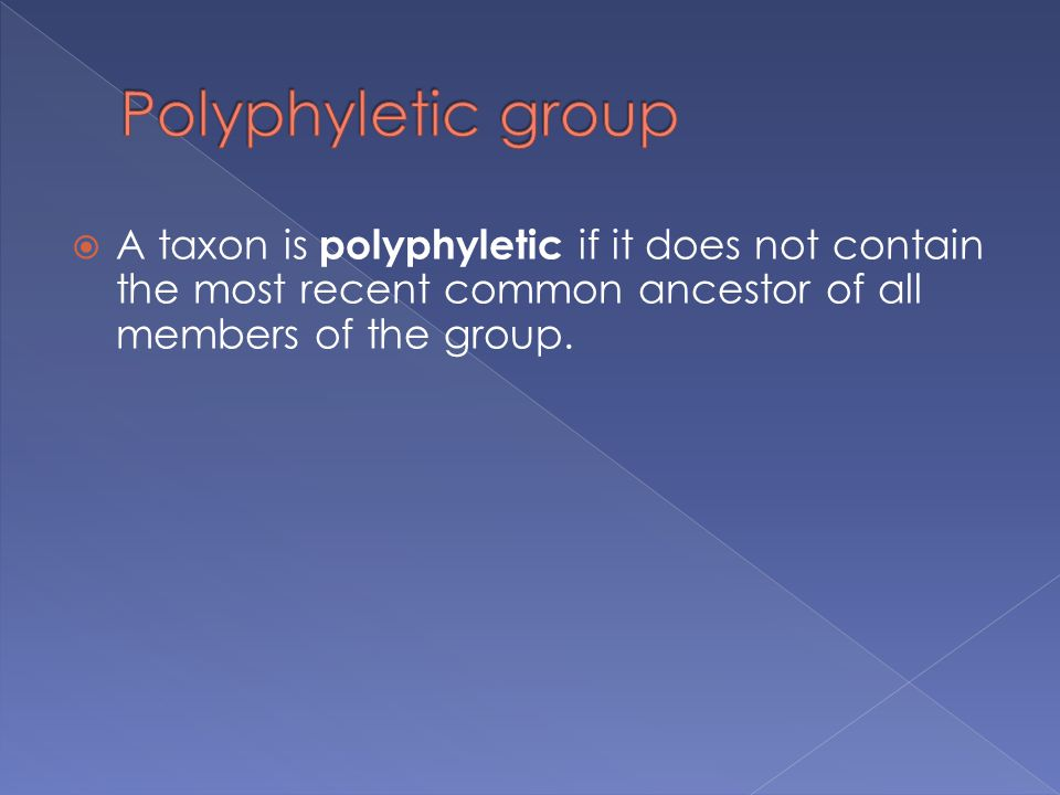 Polyphyletic group A taxon is polyphyletic if it does not contain the most recent common ancestor of all members of the group.
