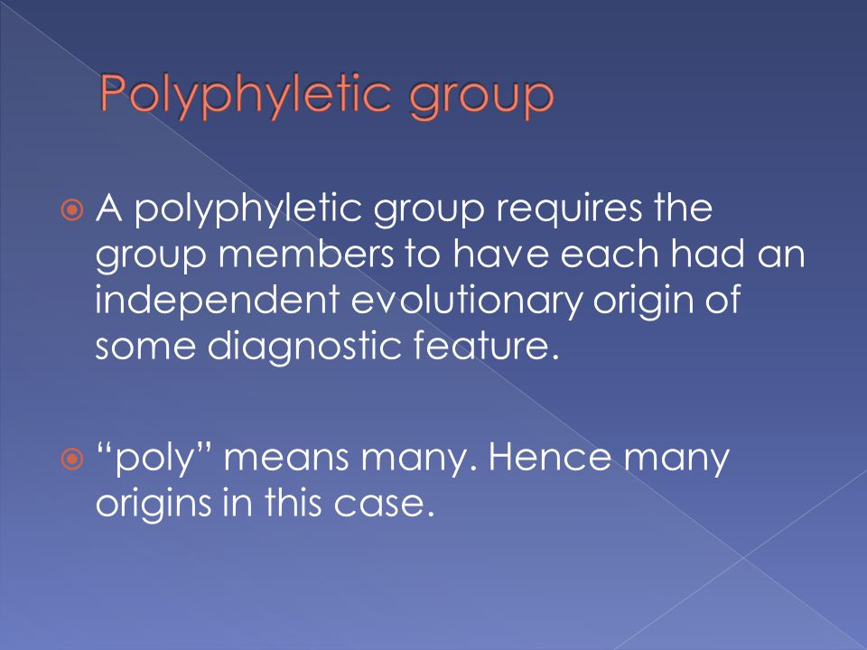 Polyphyletic group A polyphyletic group requires the group members to have each had an independent evolutionary origin of some diagnostic feature.