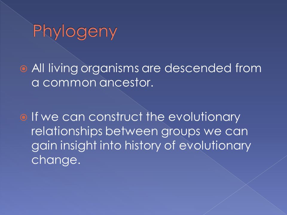 Phylogeny All living organisms are descended from a common ancestor.