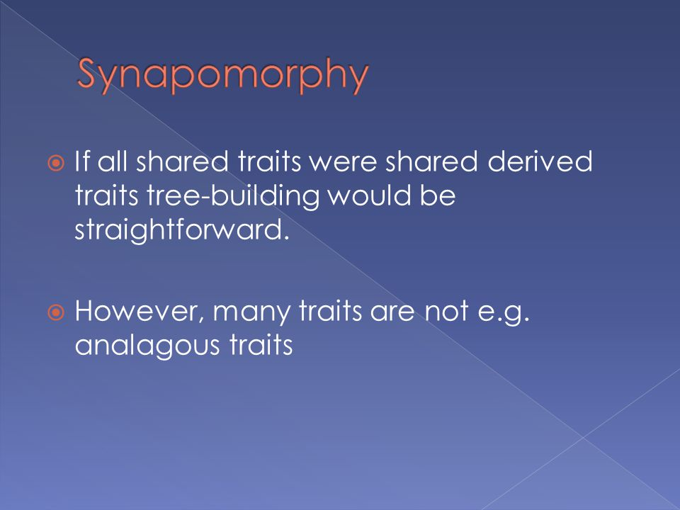 Synapomorphy If all shared traits were shared derived traits tree-building would be straightforward.