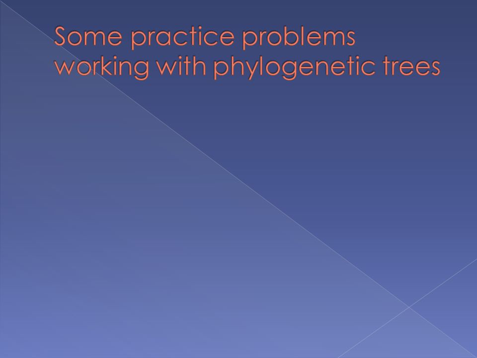 Some practice problems working with phylogenetic trees
