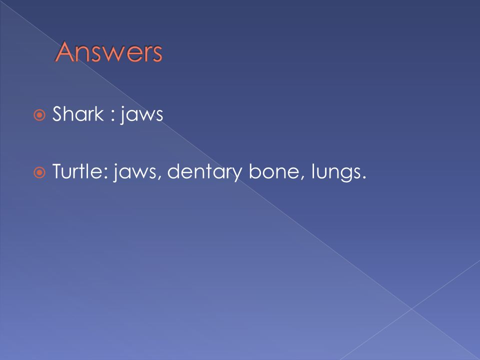 Answers Shark : jaws Turtle: jaws, dentary bone, lungs.