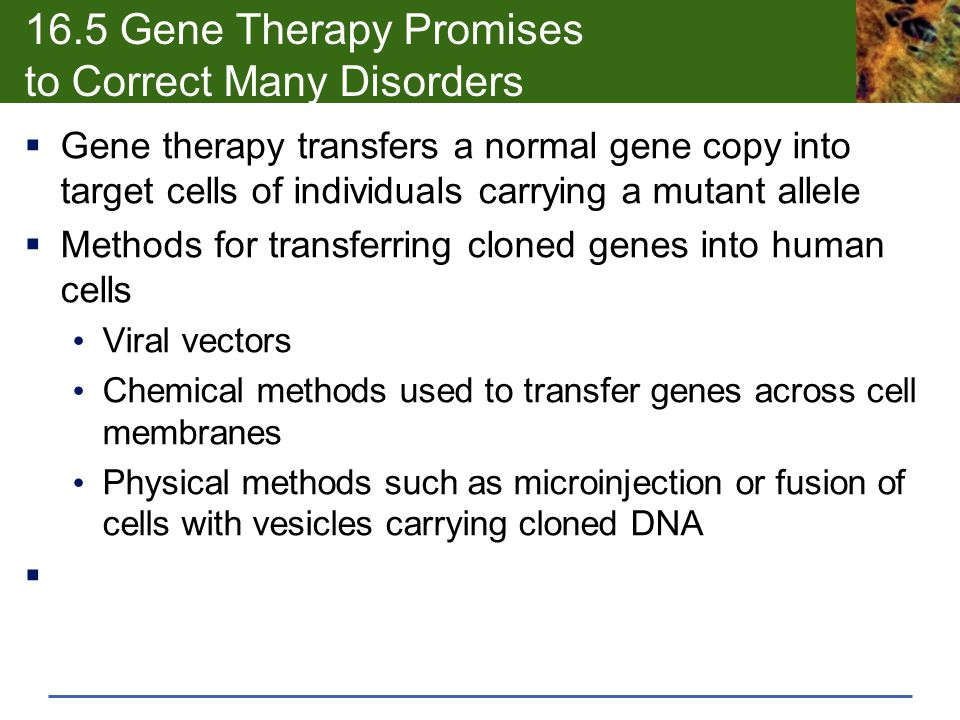 16.5 Gene Therapy Promises to Correct Many Disorders