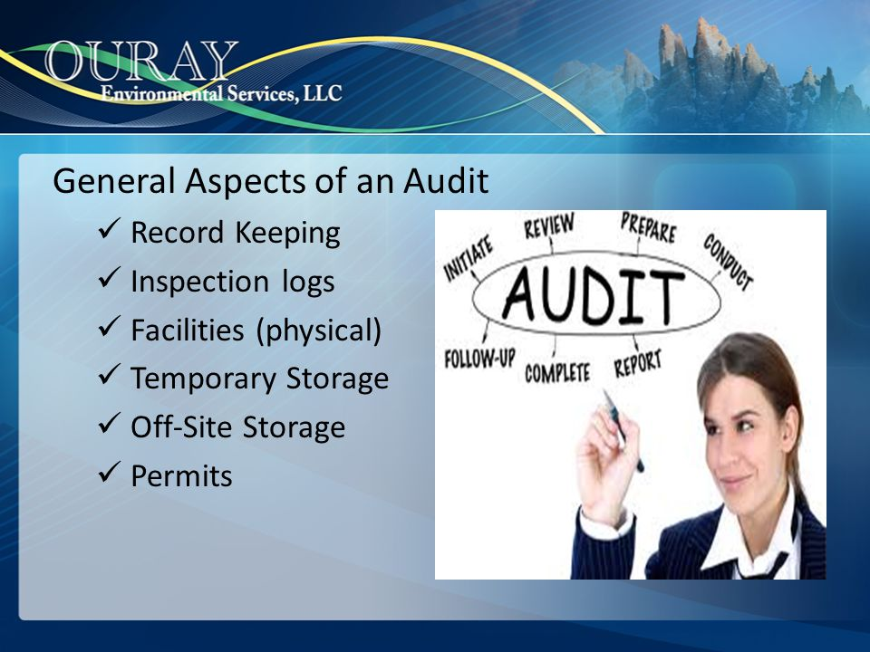 General Aspects of an Audit