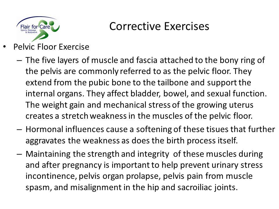 Corrective Exercises Pelvic Floor Exercise