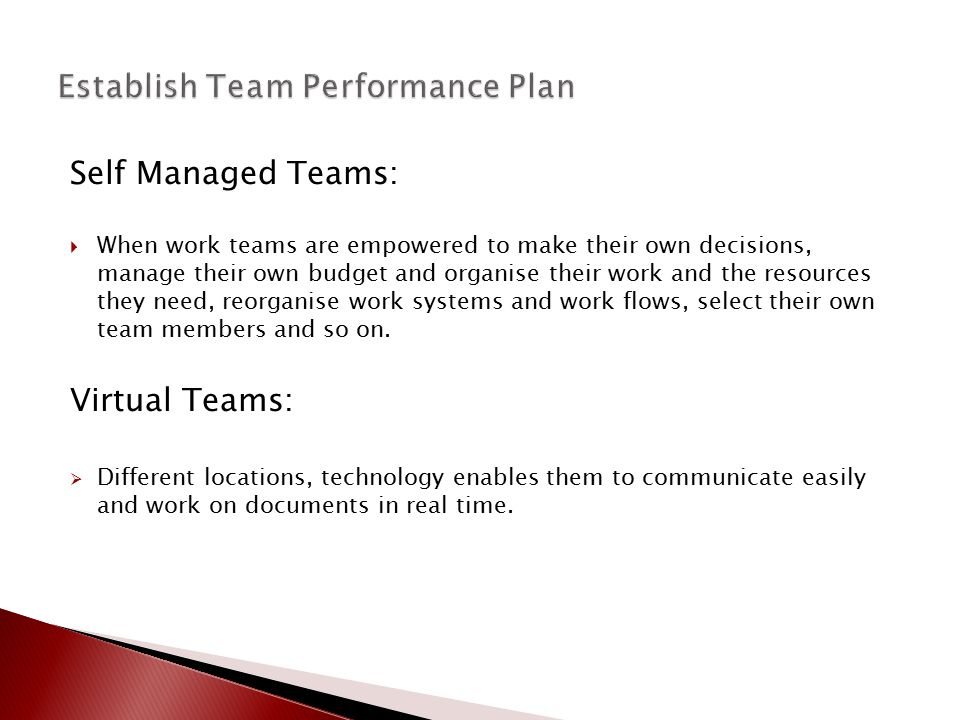 Establish Team Performance Plan