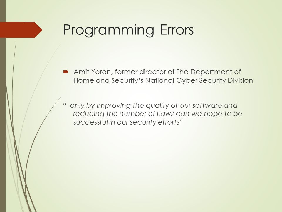 Programming Errors Amit Yoran, former director of The Department of Homeland Security's National Cyber Security Division.